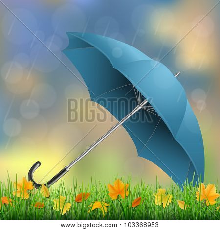 Umbrella Grass  And Fallen Leaves