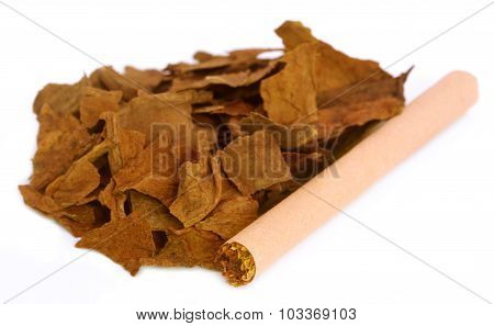 Dry Tobacco Leaves For Making Cigarette