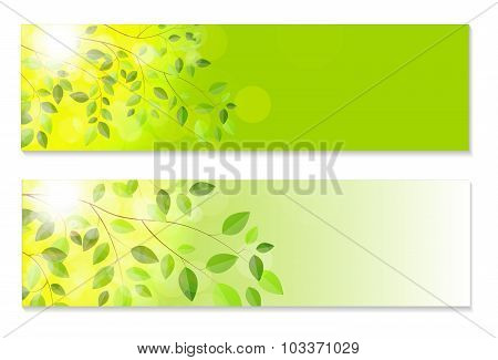 Shiny Spring Natural Leaves Background. Vector Illustration