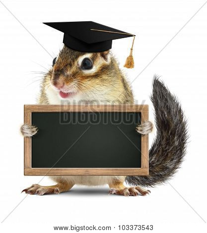 Funny Chipmunk Graduate Hold Blank Blackboard, Isolated On White