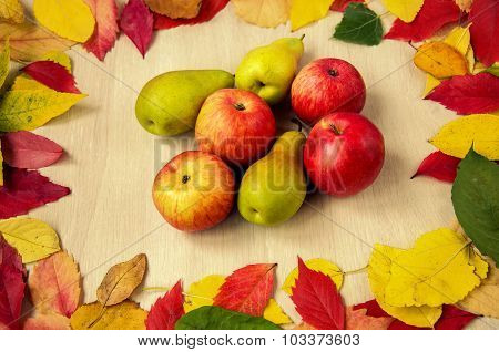 Apples and pears with leaves