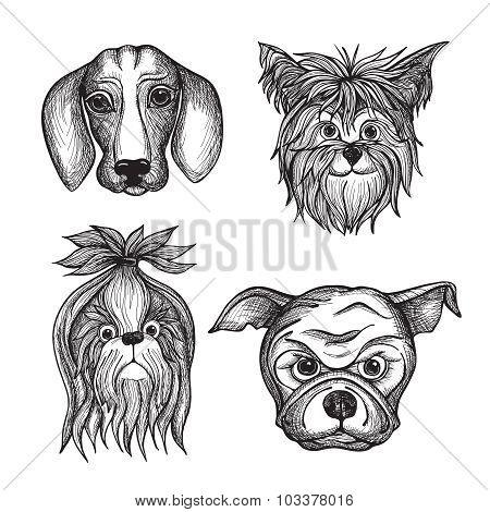 Hand Drawn Dog Faces Set