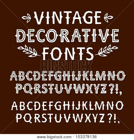 Vintage Hand Written Vector Fonts Set