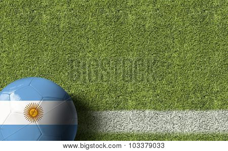 Argentina Ball in a Soccer field