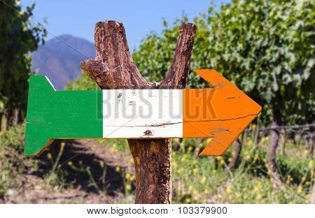 Ireland flag wooden sign with winery background