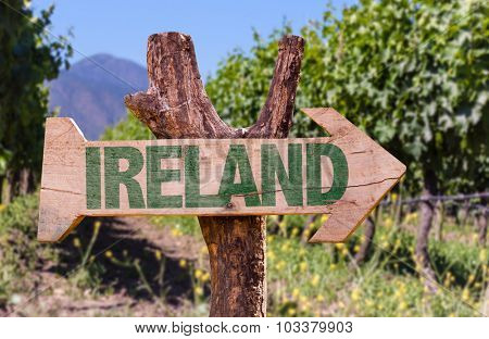 Ireland wooden sign with winery background