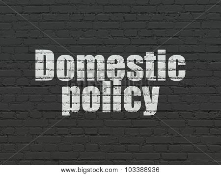 Political concept: Domestic Policy on wall background