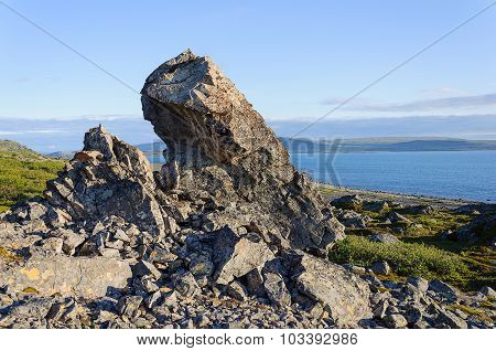 Summer Tundra Landscape With Big Stone On The Seacoast