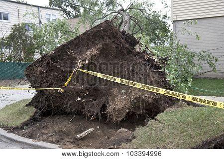 Wind Destruction
