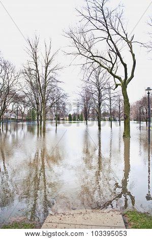Park Underwater