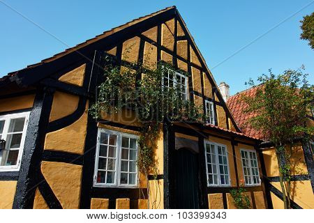Traditional Old Danish House