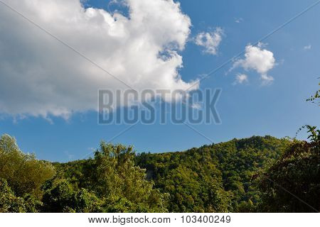 Summer Landscape With Trees, Mountains And Clouds.
