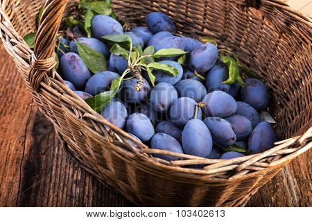 Basket Full Of Plums On A Wooden Table