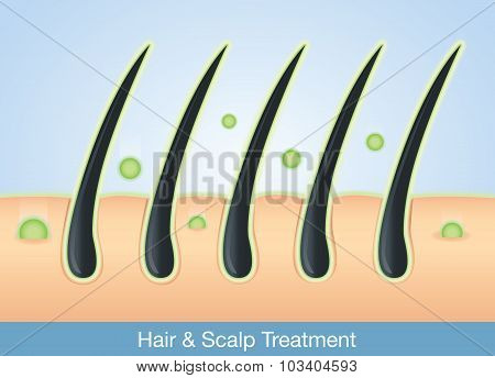 Treatment deep into hair and scalp.
