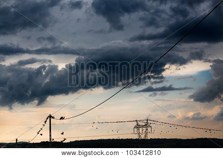 A long line of electrical transmission towers (electricity pylons) carrying high voltage lines