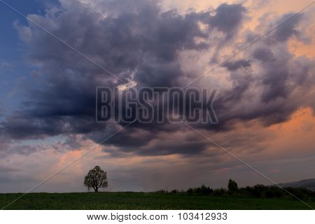 Late Evening, Hill, Tree With Beautiful Cloud In A Colorous Sky
