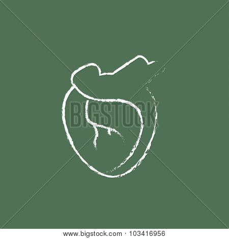 Heart hand drawn in chalk on a blackboard vector white icon isolated on a green background.