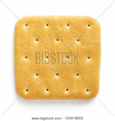 Cracker Closeup