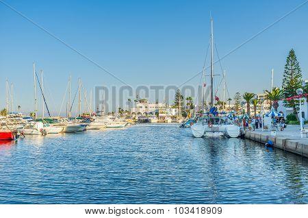 The White Port