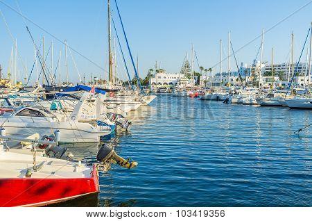 The Quiet Port
