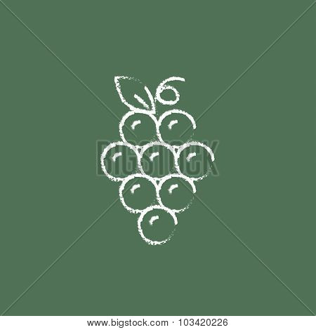Bunch of grapes hand drawn in chalk on a blackboard vector white icon isolated on a green background.