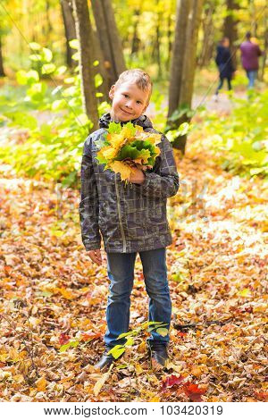 boy with autumn leaves