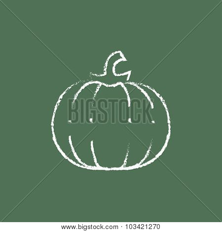Pumpkin hand drawn in chalk on a blackboard vector white icon isolated on a green background.