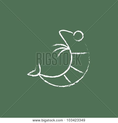 Shrimp hand drawn in chalk on a blackboard vector white icon isolated on a green background.