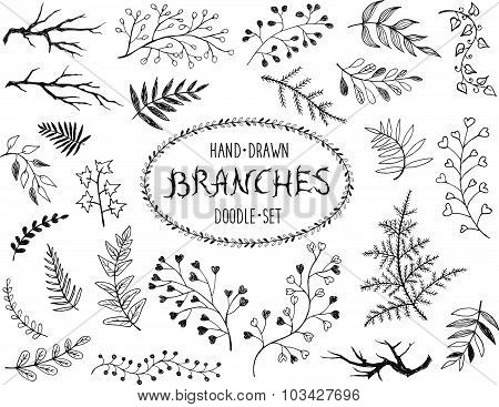 Hand drawn branches