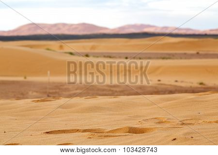 Mountain Old Fossil In  The Desert Of      Sky