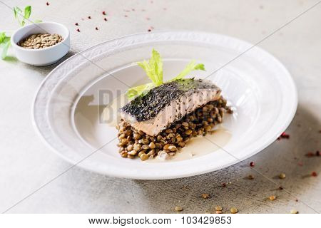 salmon fillet with lentils