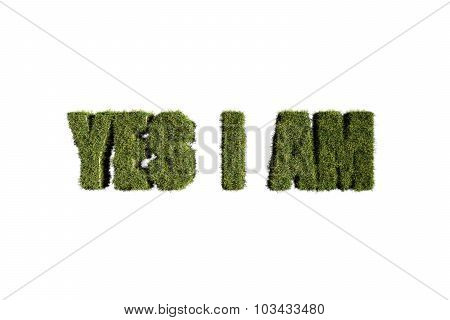 Word Made With Grass
