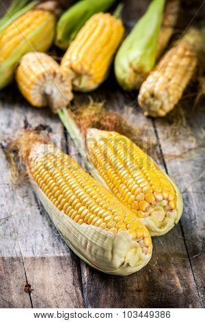 Organic Sweet Corn In Basket