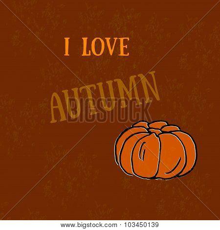 Autumn - harvest pumpkins. Pumpkin print. The organic product.