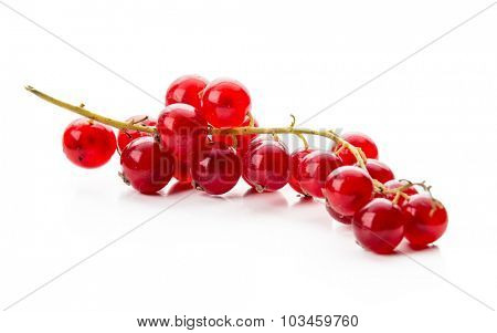 Ripe red currant on a white background.