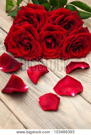Fresh Red Roses