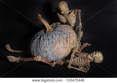 Pumpkin Over Skeleton