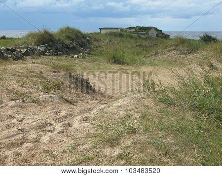 Natural sandy moor landscape