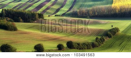Rural Landscape With Fields, Waves And Wooden Hunting Shack