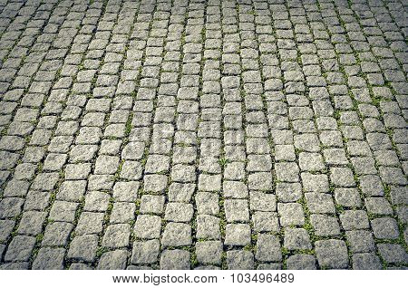 City pavers with grass.