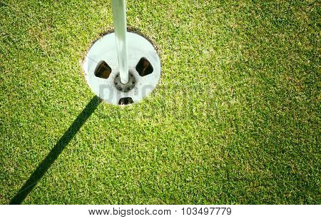 Golf Cup On Green Background With Copyspace