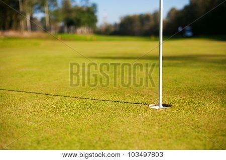 Golf Cup On Green Closeup