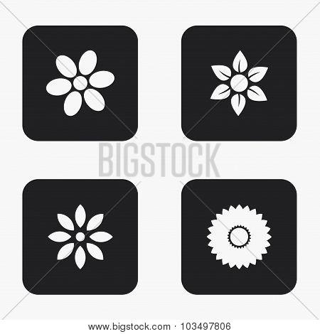 Vector modern flower icons set