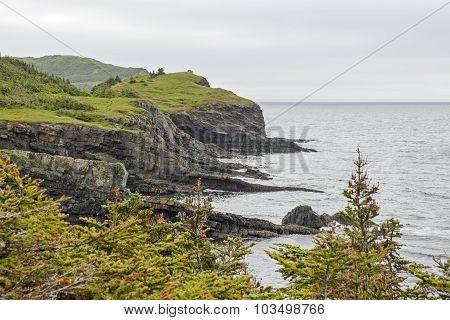 Rugged Coast In Newfoundland