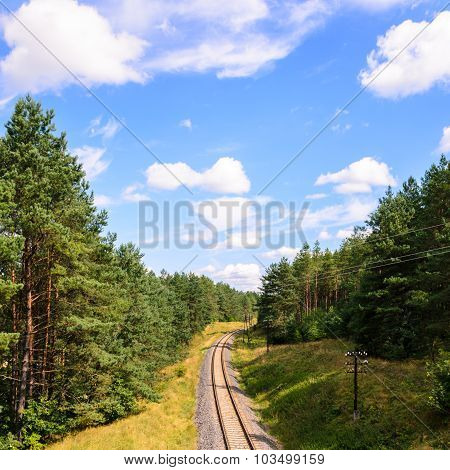 Railroad in a forest