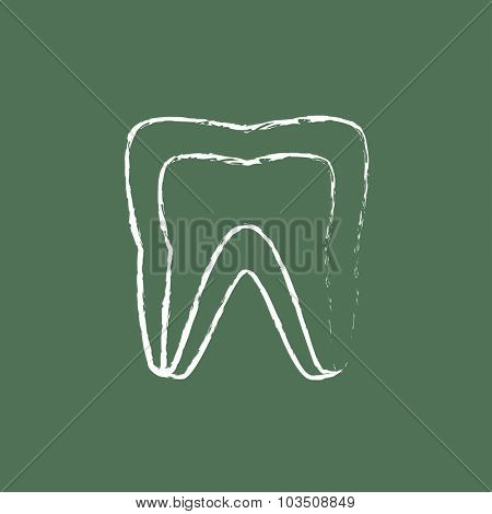 Molar tooth hand drawn in chalk on a blackboard vector white icon isolated on a green background.