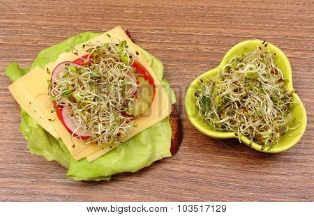 Bowl With Alfalfa And Radish Sprouts And Vegetarian Sandwich