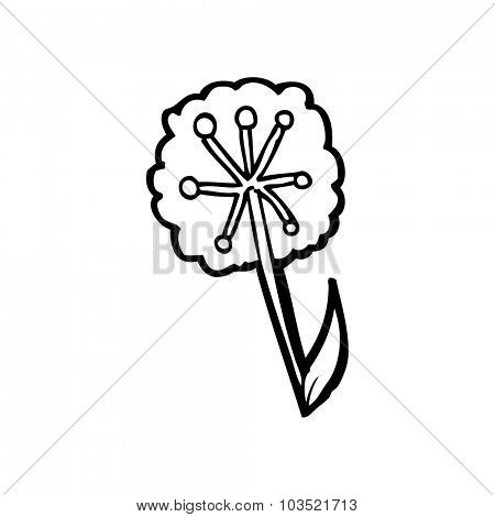 simple black and white line drawing cartoon  dandelion