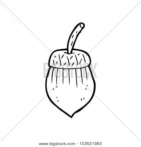 simple black and white line drawing cartoon  acorn