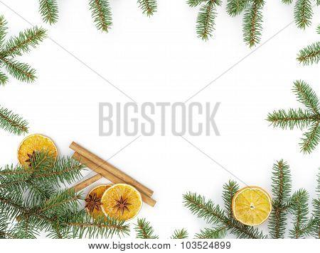 fir twig with dried orange slice on white background